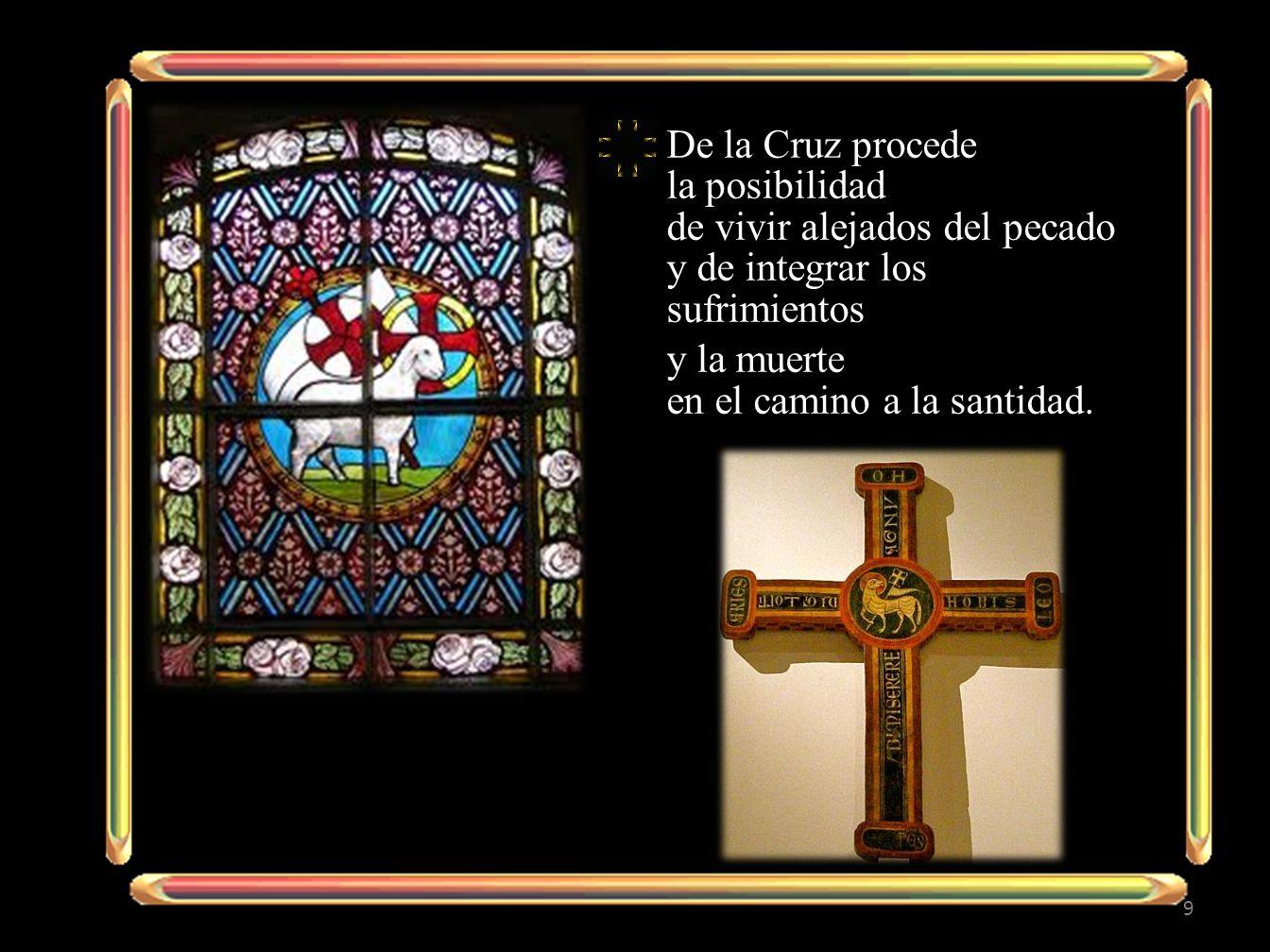 De la Cruz procede la posibilidad de vivir alejados del pecado y de integrar los sufrimientos