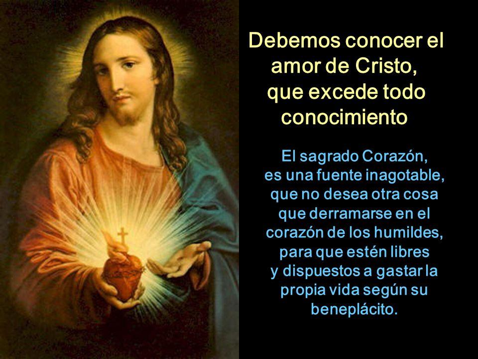Debemos conocer el amor de Cristo,
