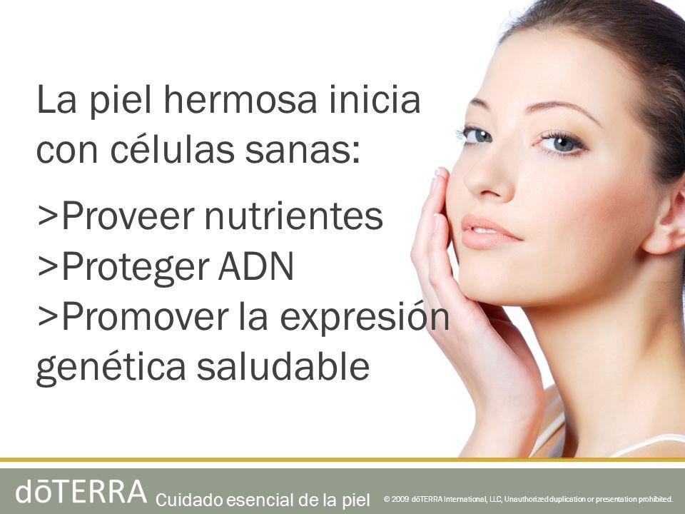 La piel hermosa inicia con células sanas: >Proveer nutrientes