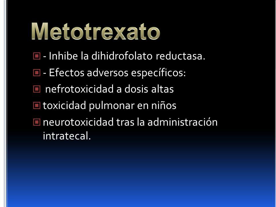 Metotrexato - Inhibe la dihidrofolato reductasa.