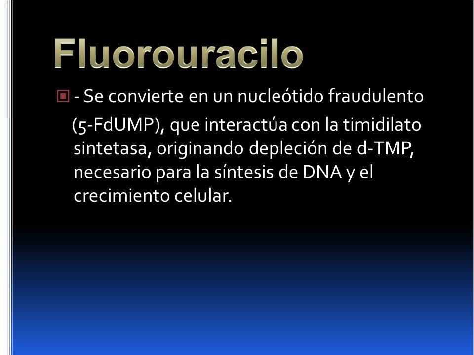 Fluorouracilo - Se convierte en un nucleótido fraudulento