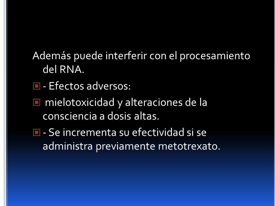 Además puede interferir con el procesamiento del RNA.