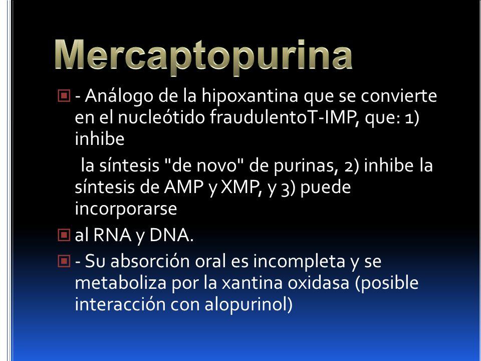 Mercaptopurina - Análogo de la hipoxantina que se convierte en el nucleótido fraudulentoT-IMP, que: 1) inhibe.