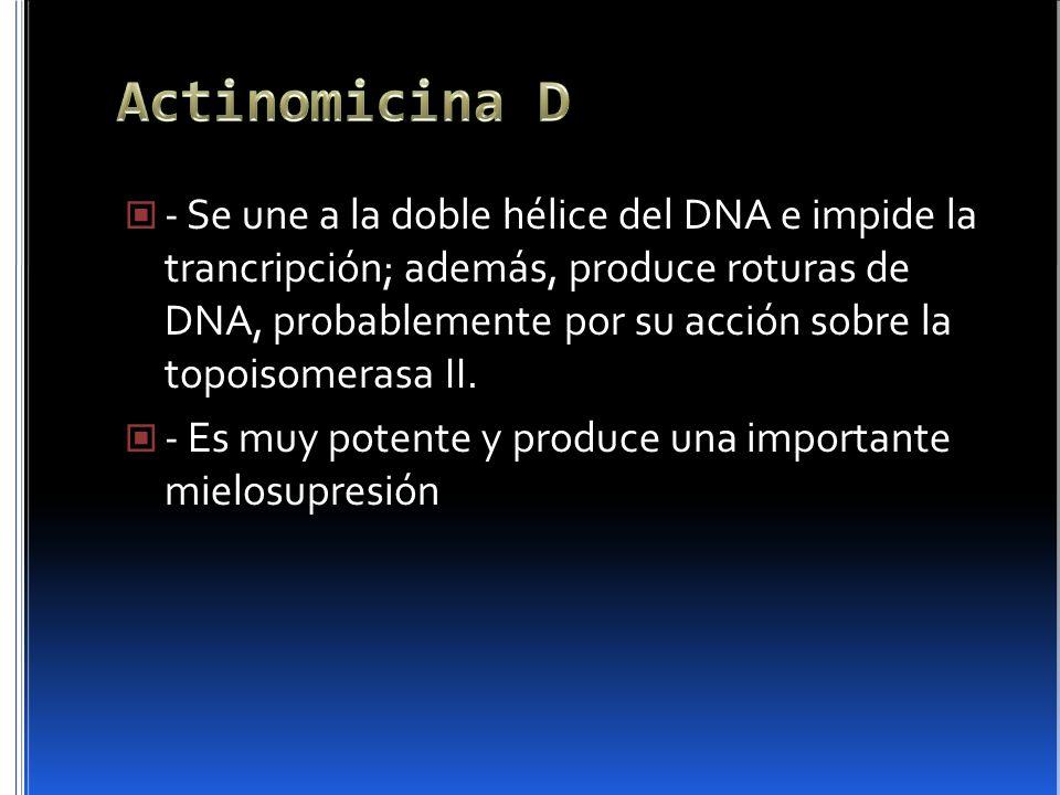 Actinomicina D