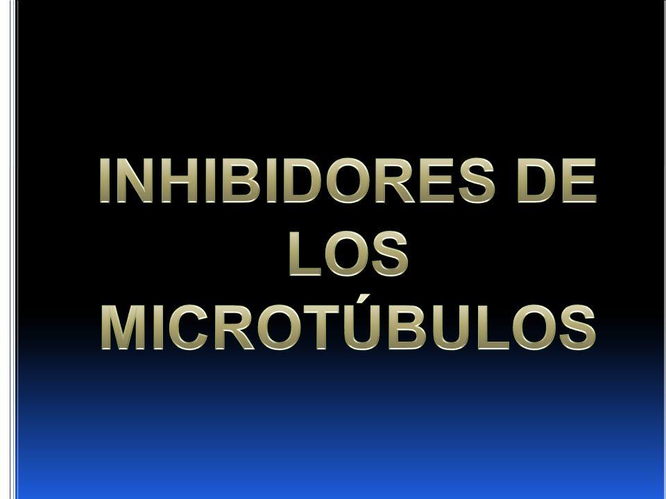 INHIBIDORES DE LOS MICROTÚBULOS
