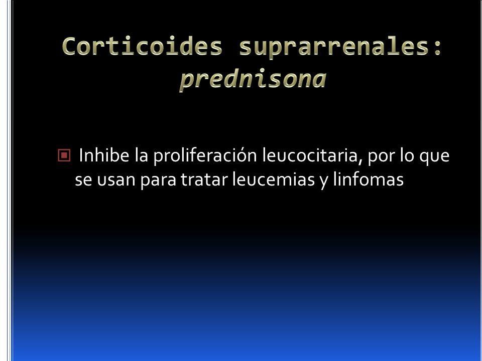 Corticoides suprarrenales: prednisona