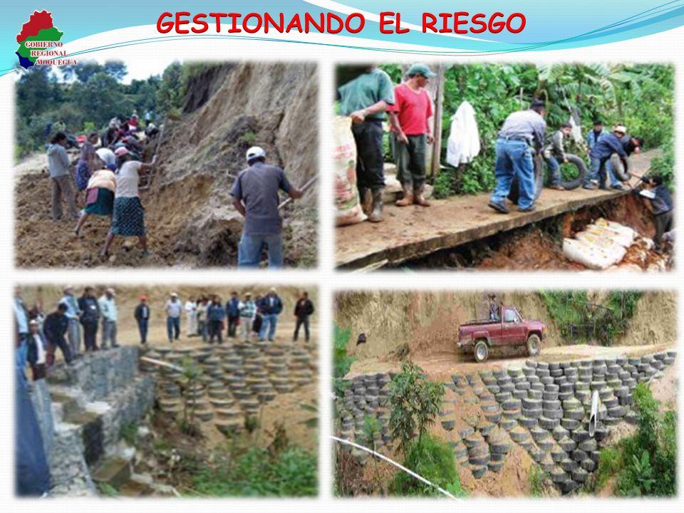 GESTIONANDO EL RIESGO