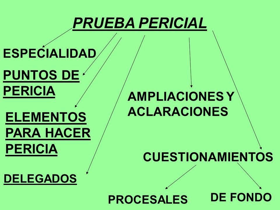 PRUEBA PERICIAL PUNTOS DE PERICIA ELEMENTOS PARA HACER PERICIA