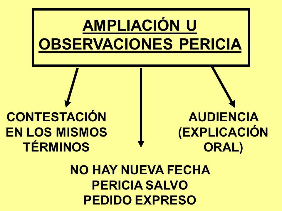 AMPLIACIÓN U OBSERVACIONES PERICIA