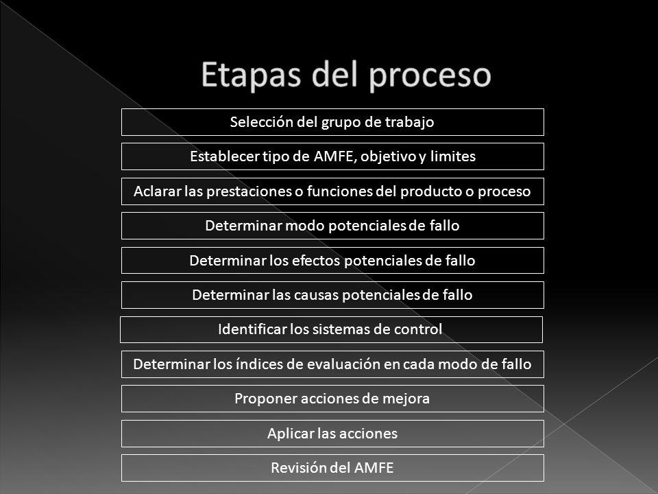 Etapas del proceso Selección del grupo de trabajo