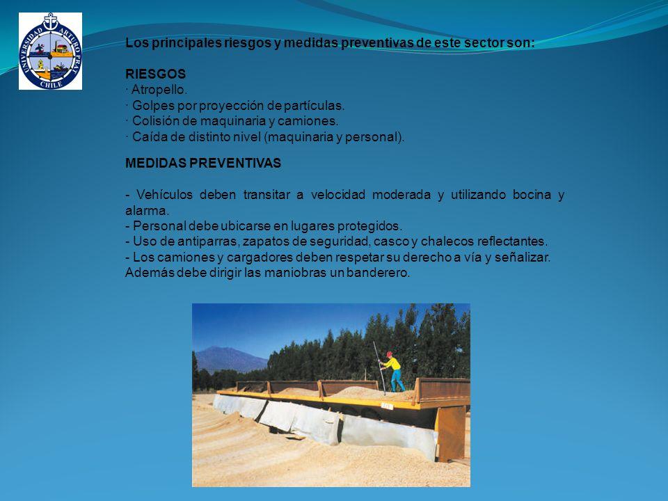 Los principales riesgos y medidas preventivas de este sector son: