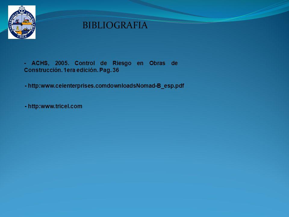 BIBLIOGRAFIA - ACHS, 2005. Control de Riesgo en Obras de Construcción. 1era edición. Pag. 36. - http:www.ceienterprises.comdownloadsNomad-B_esp.pdf.