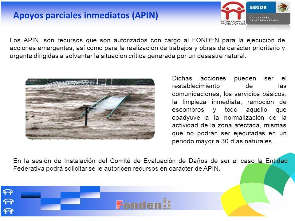 Apoyos parciales inmediatos (APIN)