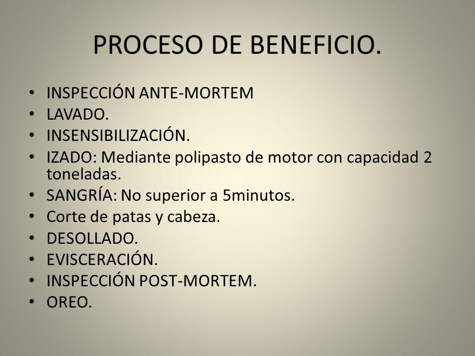 PROCESO DE BENEFICIO. INSPECCIÓN ANTE-MORTEM LAVADO.