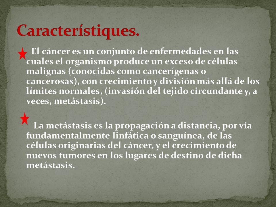 Característiques.