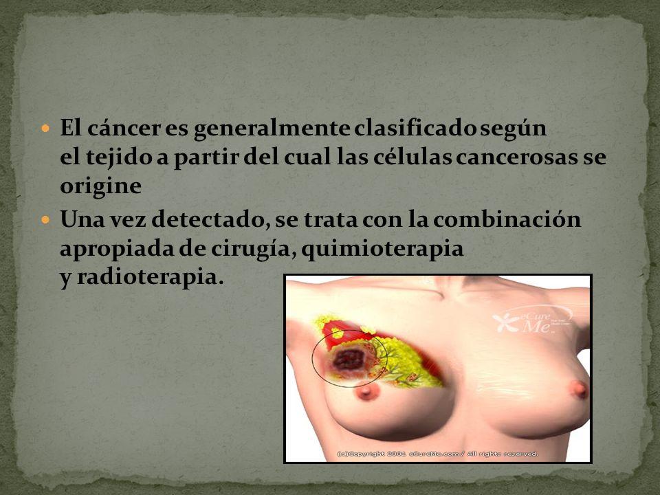 El cáncer es generalmente clasificado según el tejido a partir del cual las células cancerosas se origine