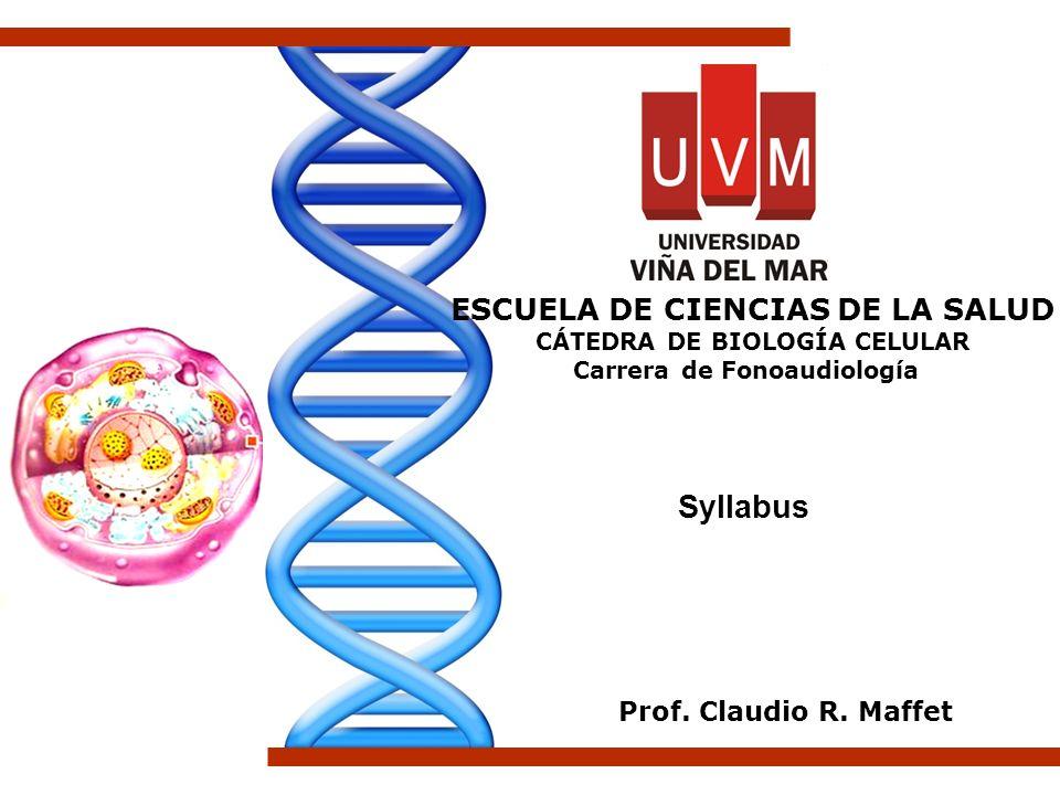 Syllabus ESCUELA DE CIENCIAS DE LA SALUD Prof. Claudio R. Maffet