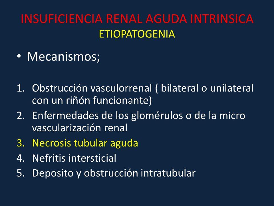INSUFICIENCIA RENAL AGUDA INTRINSICA ETIOPATOGENIA