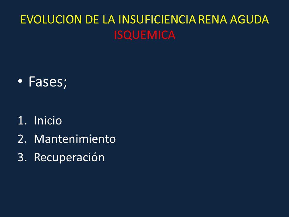 EVOLUCION DE LA INSUFICIENCIA RENA AGUDA ISQUEMICA