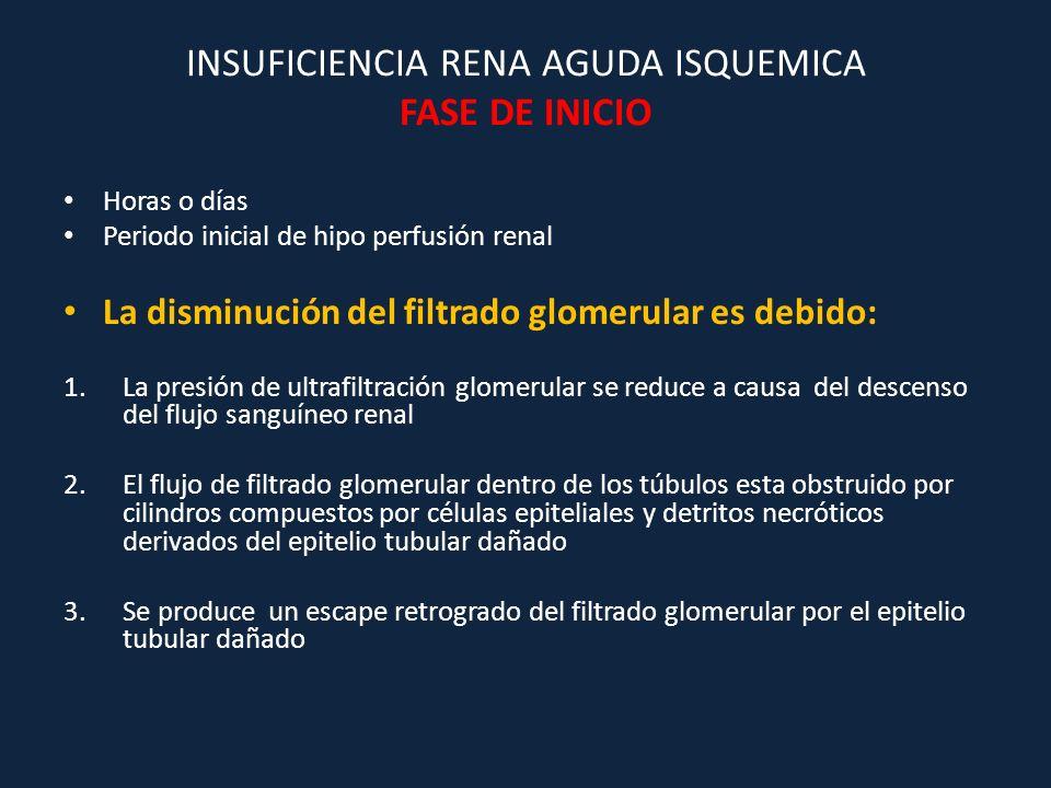 INSUFICIENCIA RENA AGUDA ISQUEMICA FASE DE INICIO