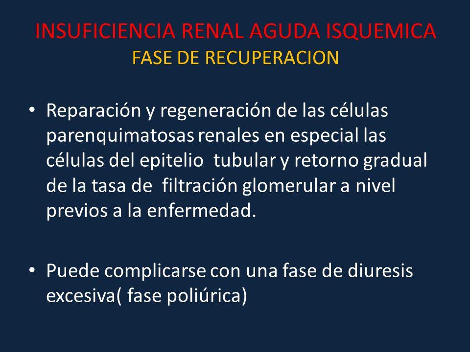 INSUFICIENCIA RENAL AGUDA ISQUEMICA FASE DE RECUPERACION