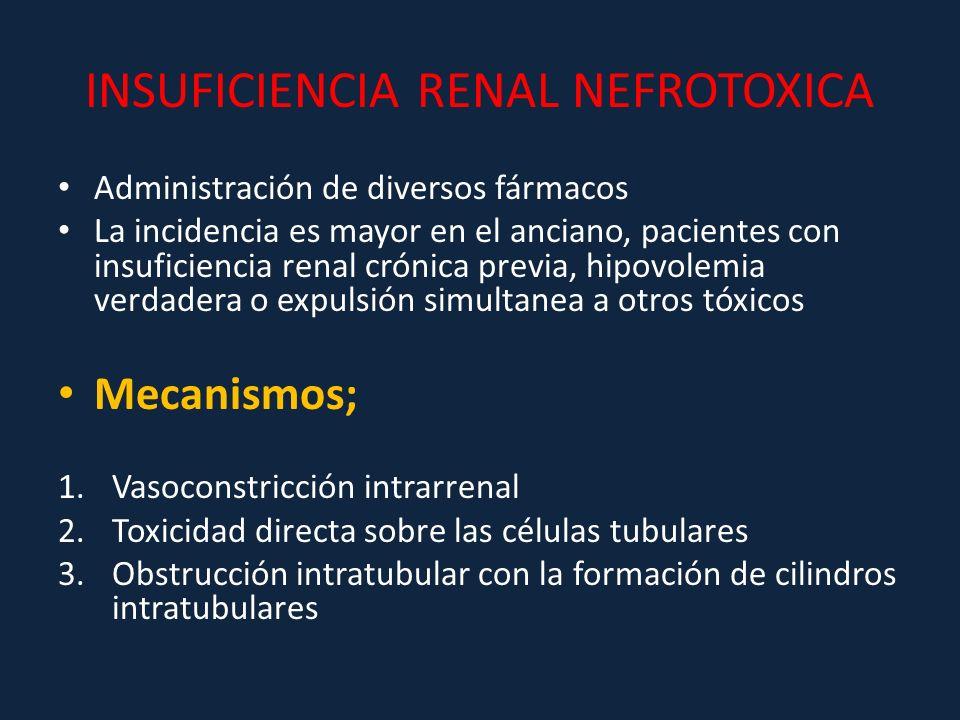 INSUFICIENCIA RENAL NEFROTOXICA