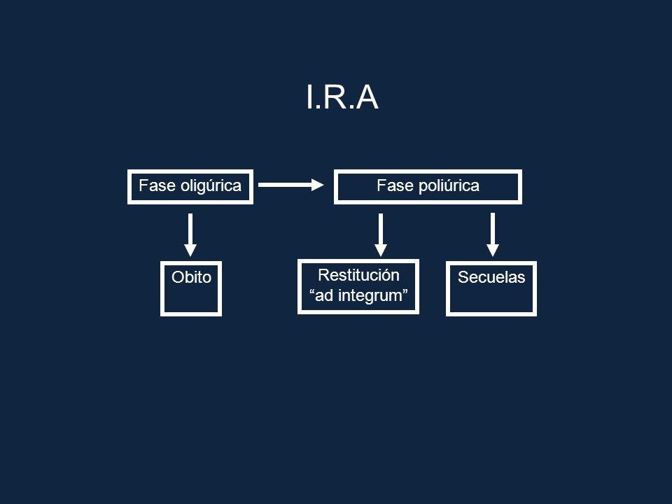 I.R.A Fase oligúrica Fase poliúrica Obito Restitución ad integrum