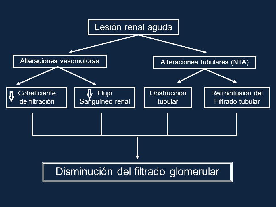 Disminución del filtrado glomerular
