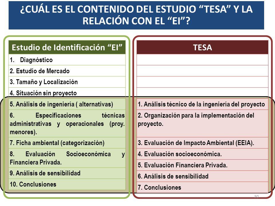 ¿CUÁL ES EL CONTENIDO DEL ESTUDIO TESA Y LA RELACIÓN CON EL EI