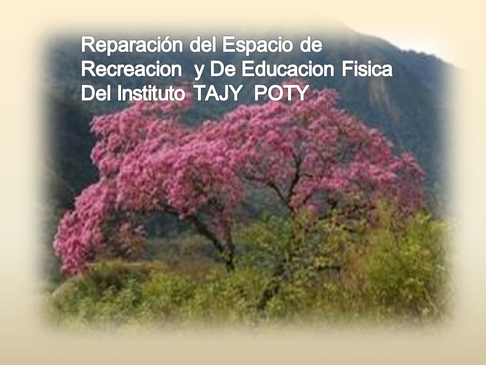 Reparación del Espacio de Recreacion y De Educacion Fisica Del Instituto TAJY POTY