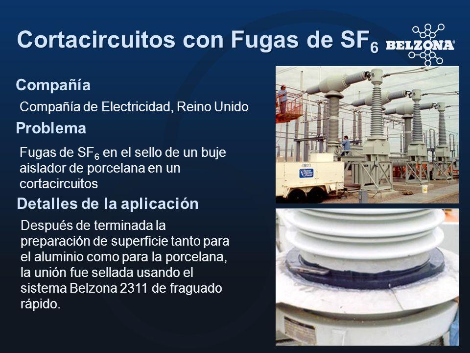 Cortacircuitos con Fugas de SF6