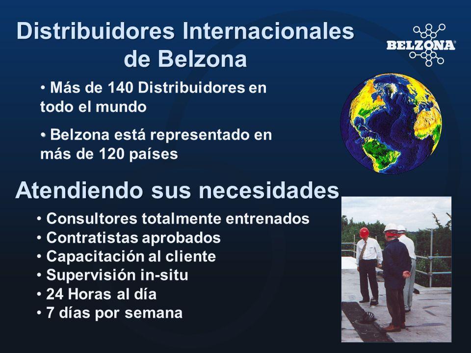 Distribuidores Internacionales de Belzona Atendiendo sus necesidades