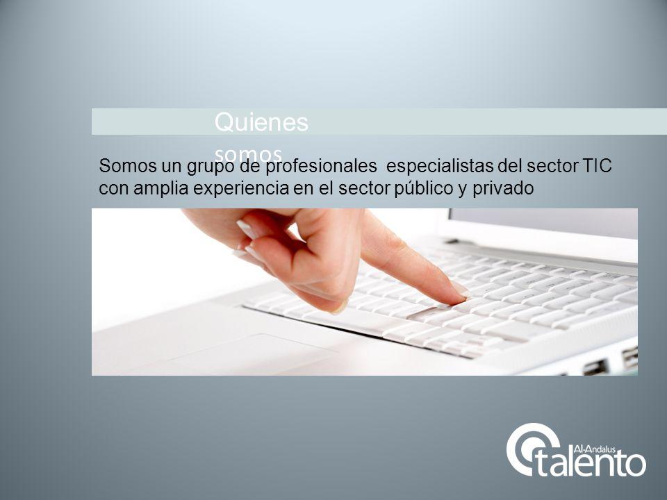 Quienes somos Somos un grupo de profesionales especialistas del sector TIC.