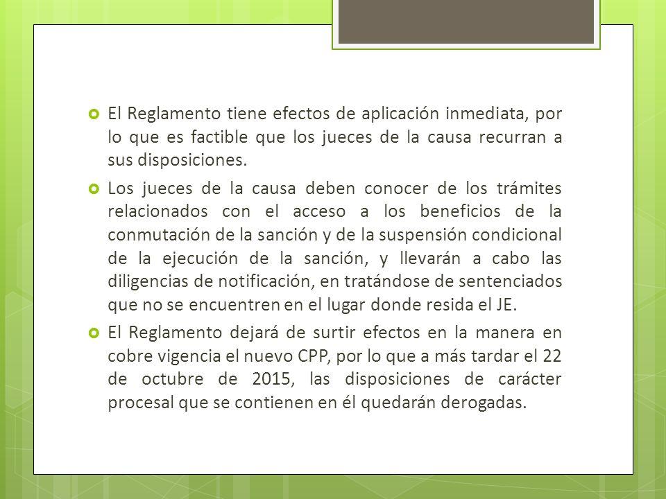 El Reglamento tiene efectos de aplicación inmediata, por lo que es factible que los jueces de la causa recurran a sus disposiciones.