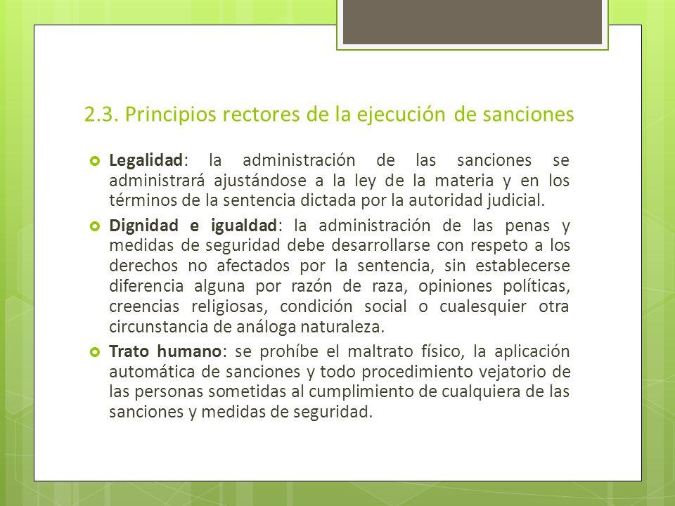 2.3. Principios rectores de la ejecución de sanciones