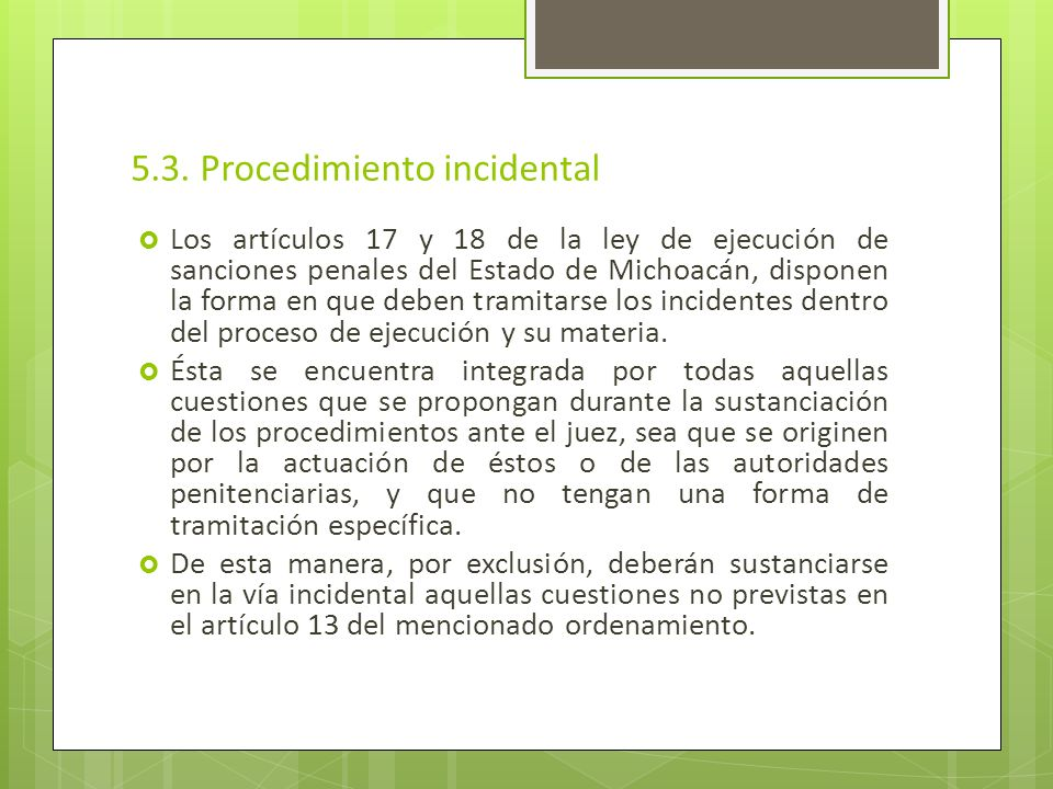 5.3. Procedimiento incidental