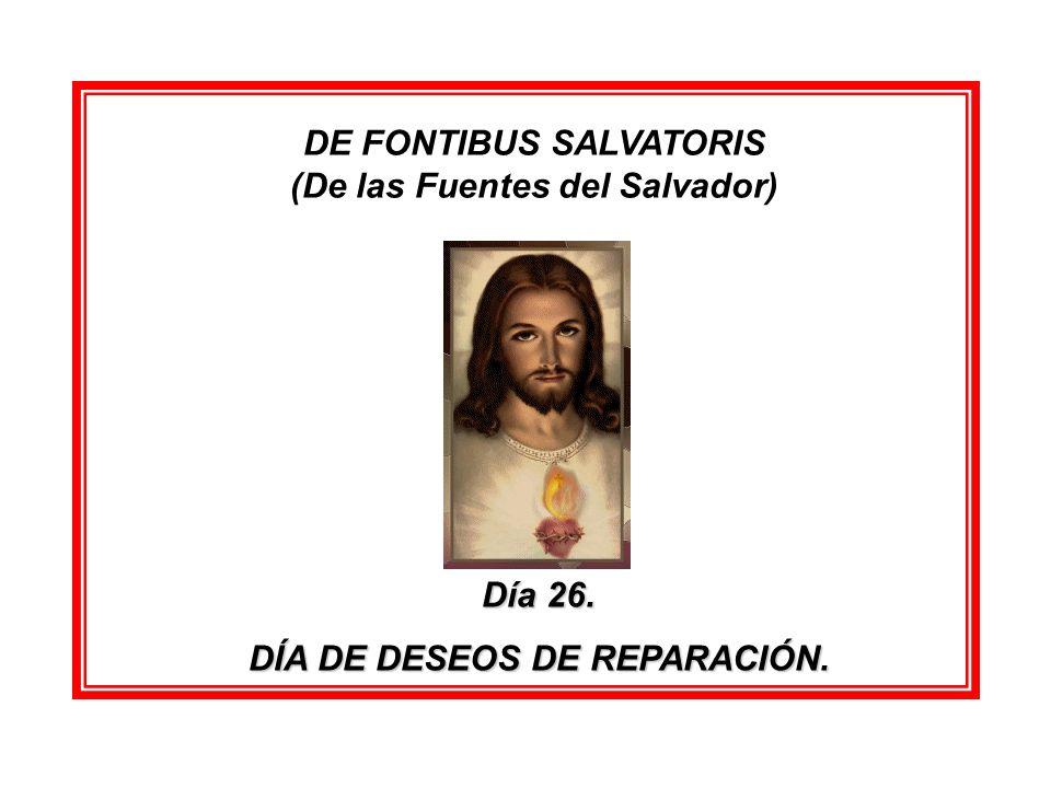 DE FONTIBUS SALVATORIS (De las Fuentes del Salvador)