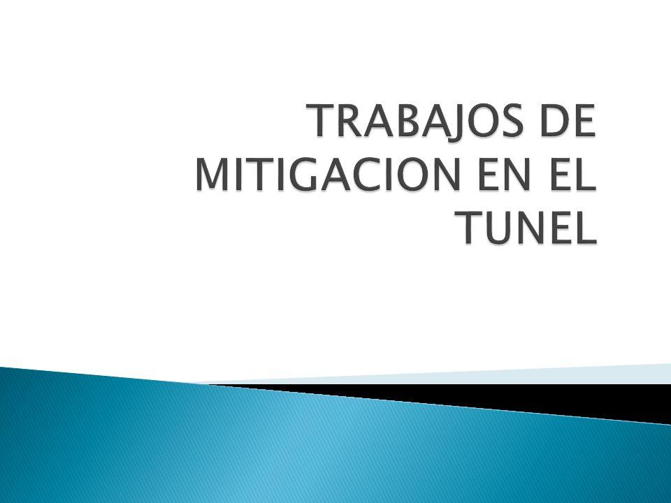 TRABAJOS DE MITIGACION EN EL TUNEL