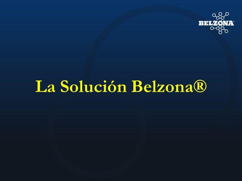 La Solución Belzona®