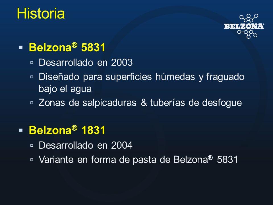 Historia Belzona® 5831 Belzona® 1831 Desarrollado en 2003