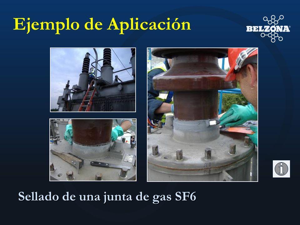 Ejemplo de Aplicación Sellado de una junta de gas SF6