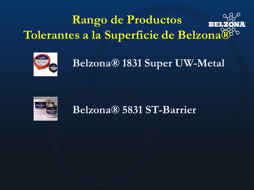 Tolerantes a la Superficie de Belzona®