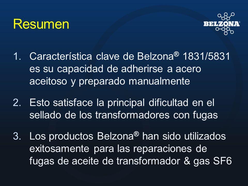 ResumenCaracterística clave de Belzona® 1831/5831 es su capacidad de adherirse a acero aceitoso y preparado manualmente.