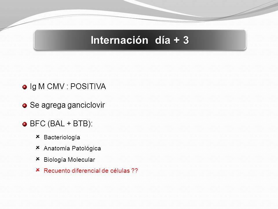 Internación día + 3 Ig M CMV : POSITIVA Se agrega ganciclovir