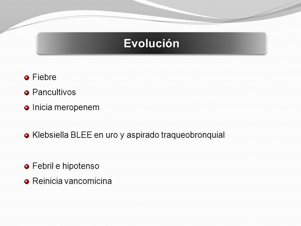 Evolución Fiebre Pancultivos Inicia meropenem