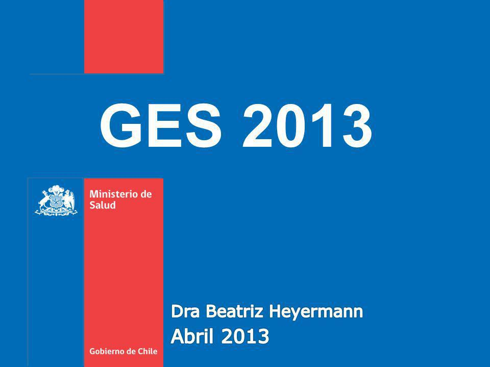 GES 2013 Dra Beatriz Heyermann Abril 2013