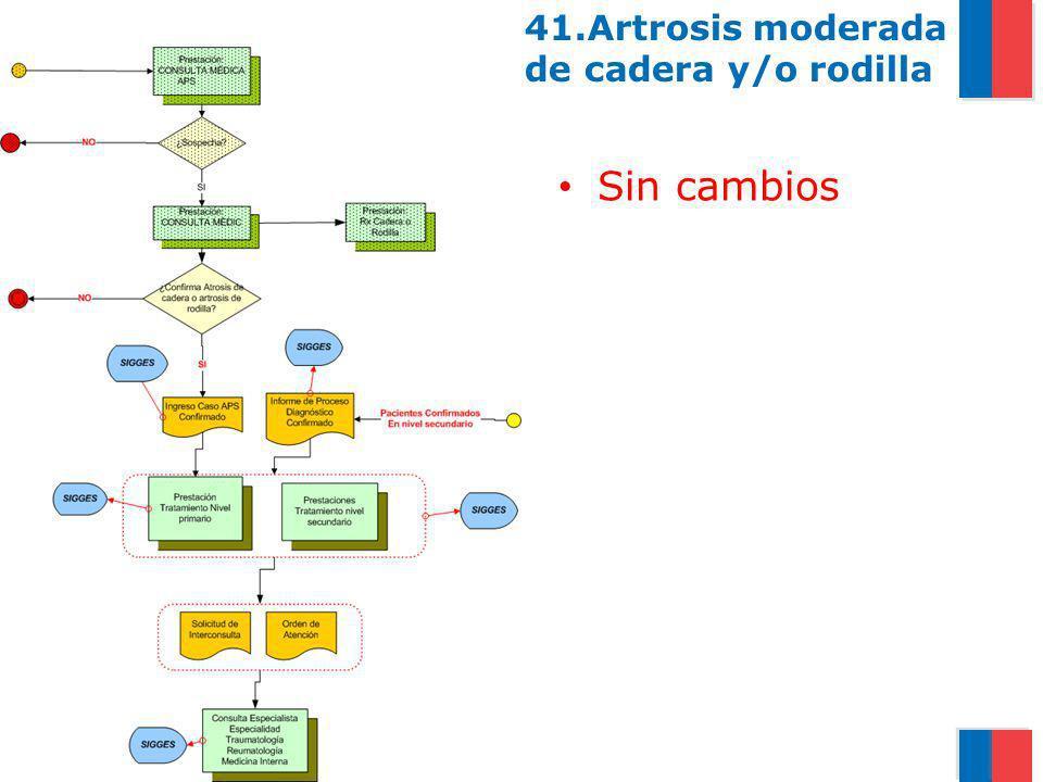 41.Artrosis moderada de cadera y/o rodilla