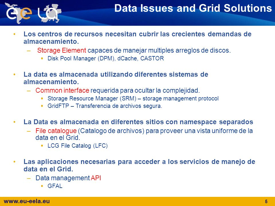 Data Issues and Grid Solutions