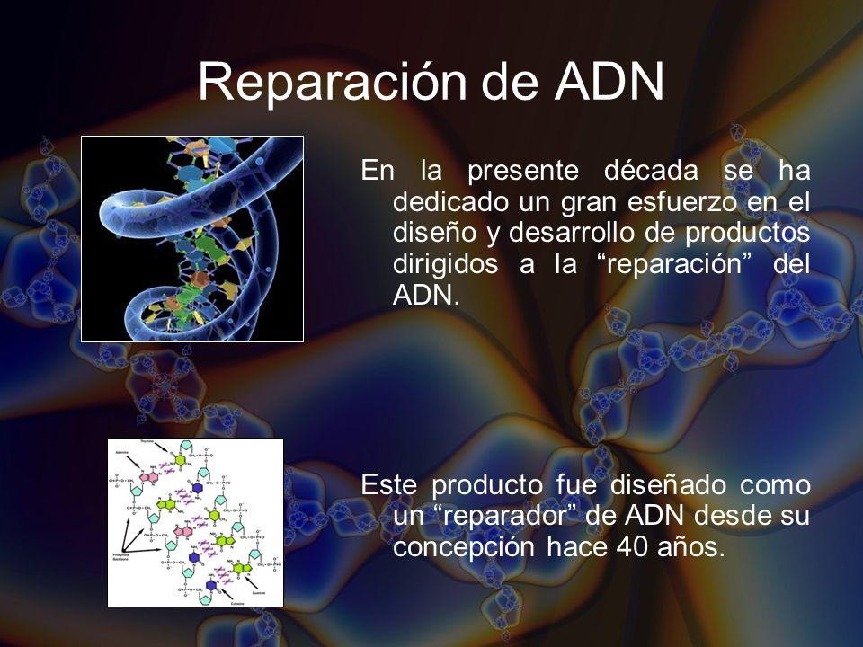 Reparación de ADN En la presente década se ha dedicado un gran esfuerzo en el diseño y desarrollo de productos dirigidos a la reparación del ADN.