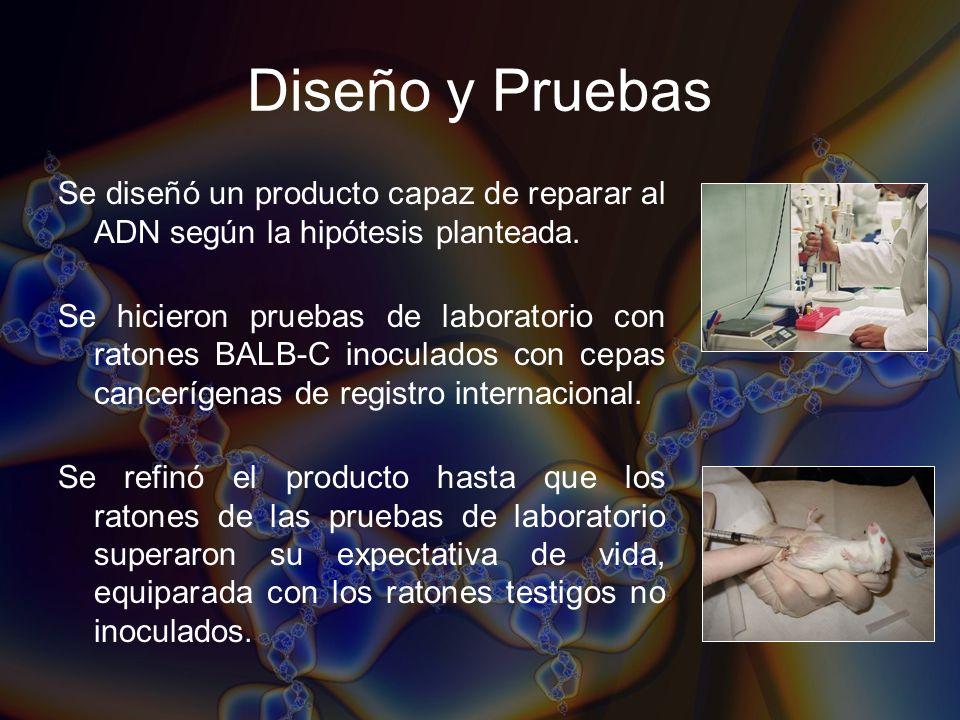 Diseño y PruebasSe diseñó un producto capaz de reparar al ADN según la hipótesis planteada.
